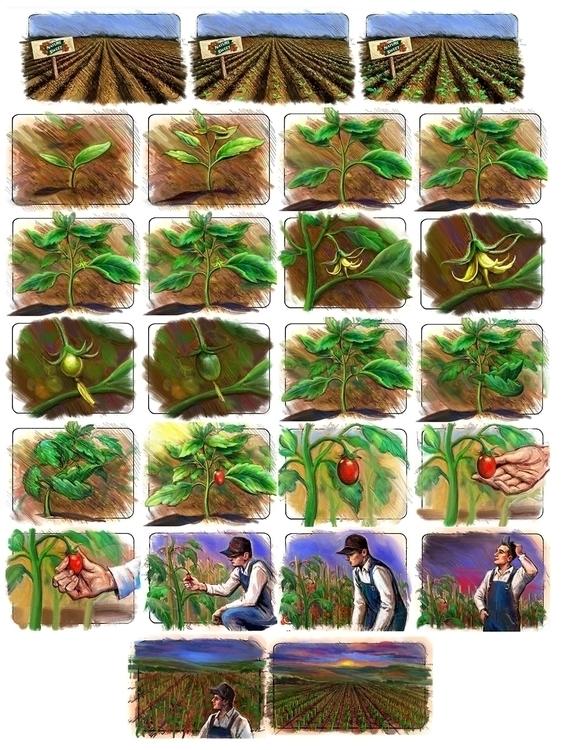 NatureSweet Board - storyboard, illustration - doritart   ello