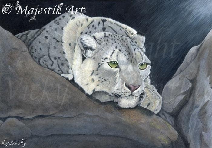 Conserve - snowleopard, coloredpencil - majestikart | ello