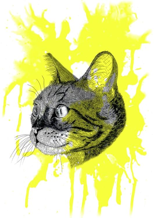 Kitty - yellow - illustration, drawing - cristianatorres | ello