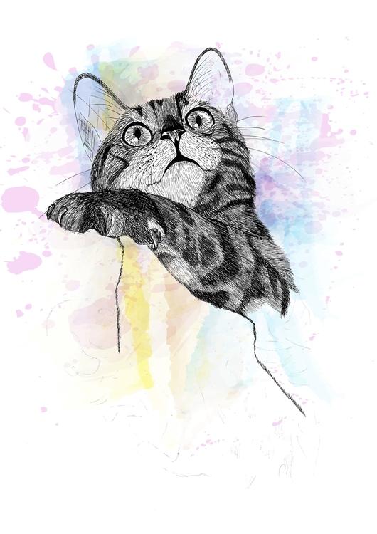 Curious Cat - illustration, drawing - cristianatorres | ello
