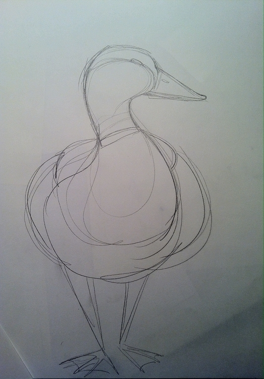 Duck design, curvy  - animal, duck - clarisse-1174 | ello