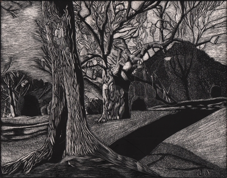Forest - illustration, scratchboard - jtiedemann | ello