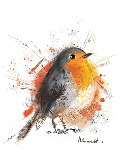 bird, colorful, illustration - marinaveselinovic | ello