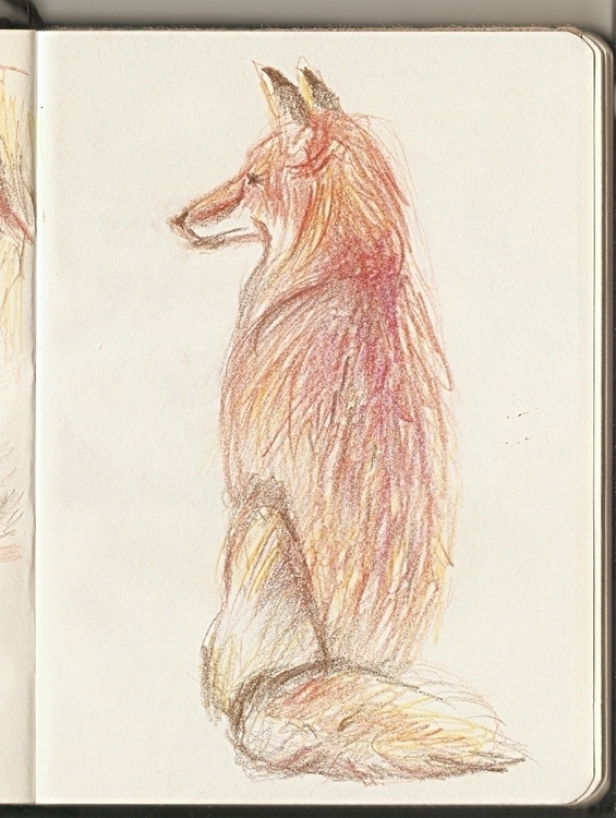 Fox - sketch, sketchbook, drawing - marianazancheta | ello