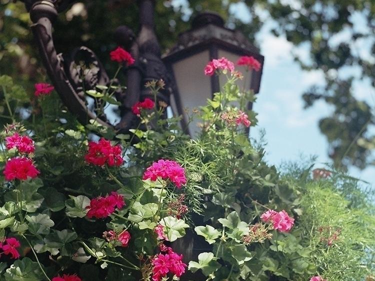 Odessa Trip - photography, filmphotography - tieller | ello