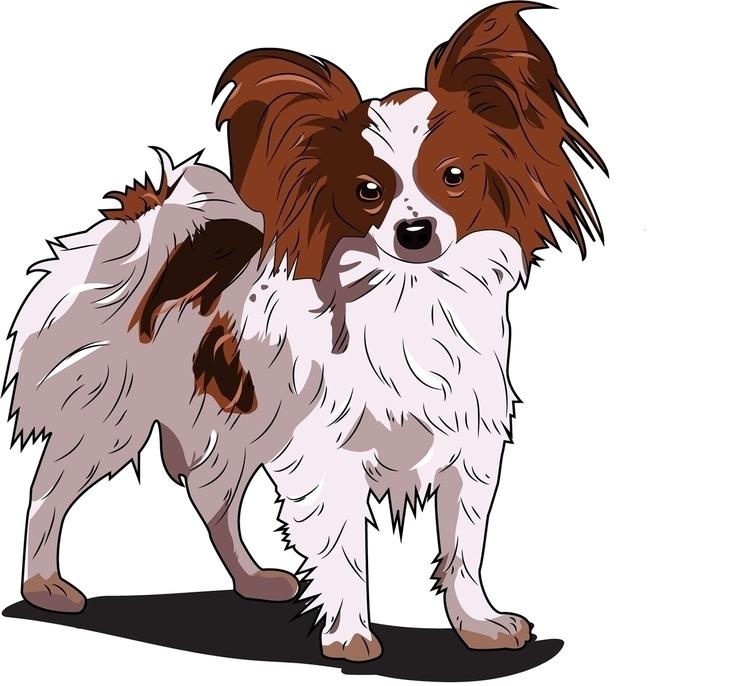 Papillion - dog, vector - itsamebry | ello