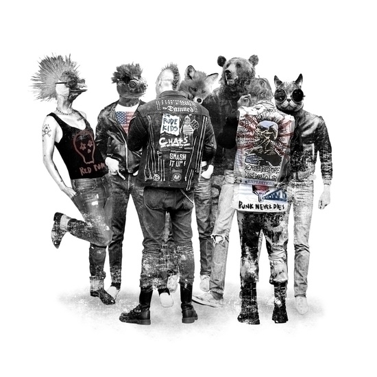 Punk Animals - photography, fashion - seren-1097 | ello
