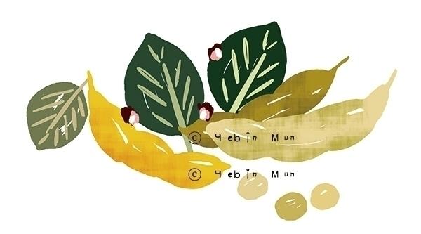'Sybean Paste' package illust - illustration - yebin | ello