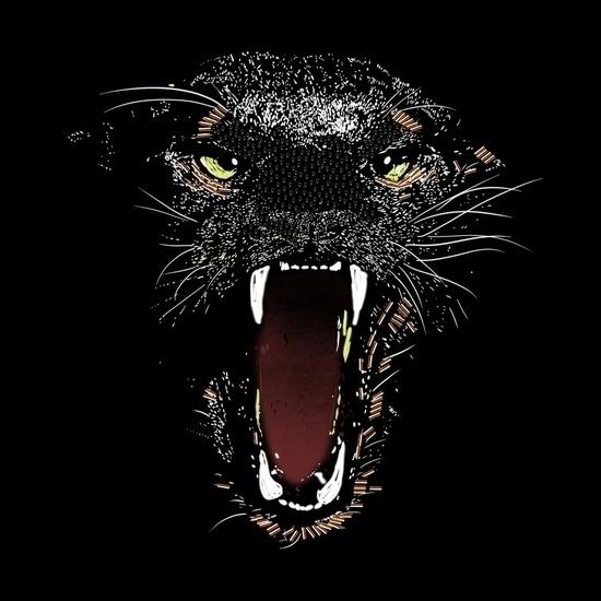 Black panther - illustration, characterdesign - seren-1097 | ello