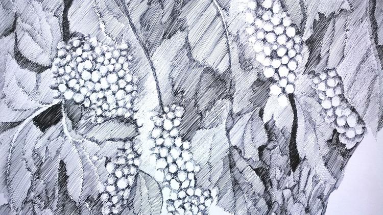 illustration, drawing - mirjanaantonijevic | ello