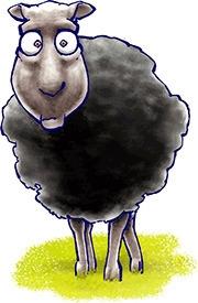 black sheep - character - jurjenkraan   ello