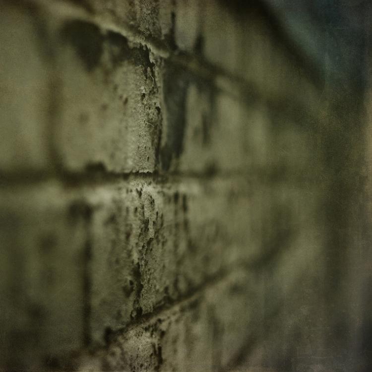 photography, texture, urban, brick - vogelina | ello