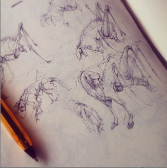 sketch, sheep, insects, hybrid - stetocefalo | ello