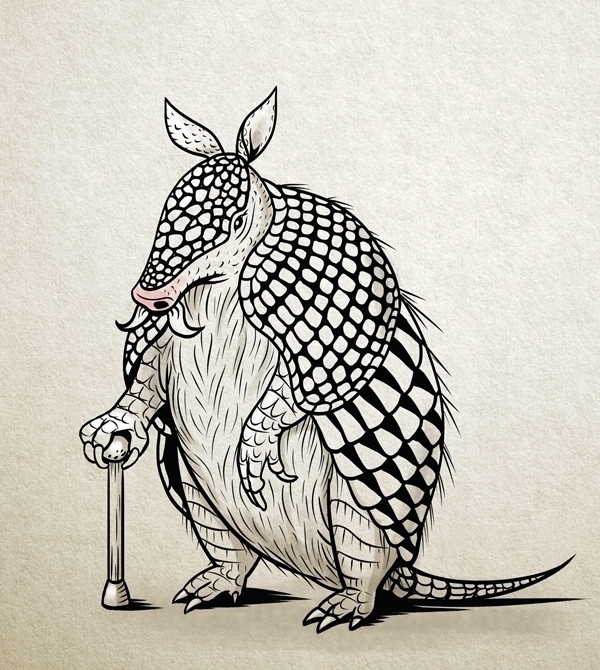 Armadillo grandpa - armadillo, animal - pushkina | ello