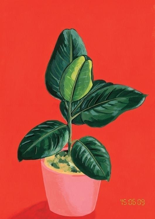 Ficus - plants, painting, acrylicpaint - jeezvanilla | ello