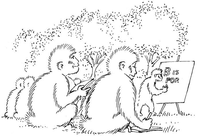 Trent school - #illustration, monkey - dannybriggs   ello