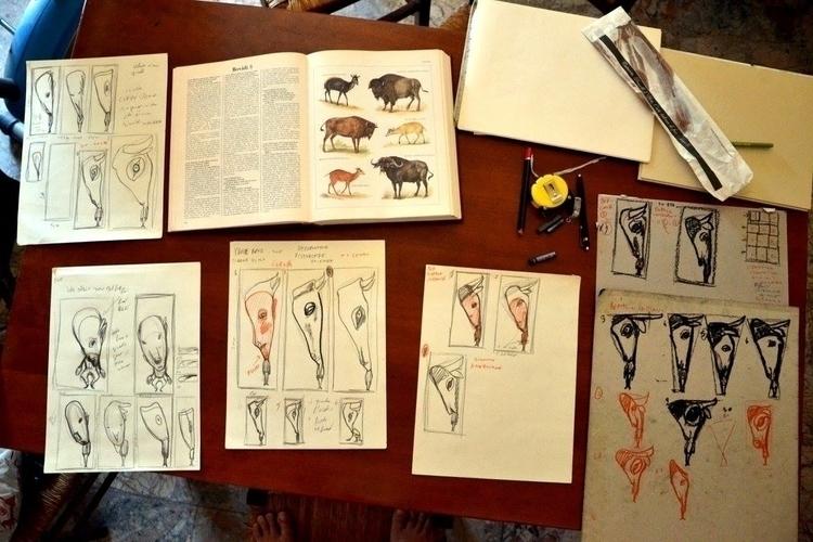study. natural form animal scie - fagfedericaaglietti   ello