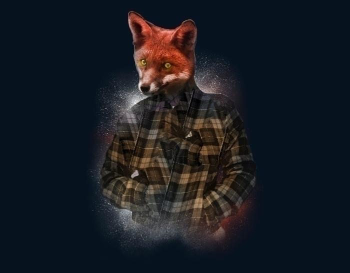 Blizzard Fox - illustration, fox - daniac | ello