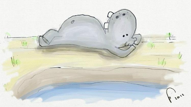 hippo, hippo, hippopotamus, children'sillustration - murumuru-7090 | ello