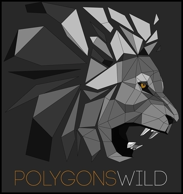 Logo created PolygonsWild - illustration - outkkast | ello