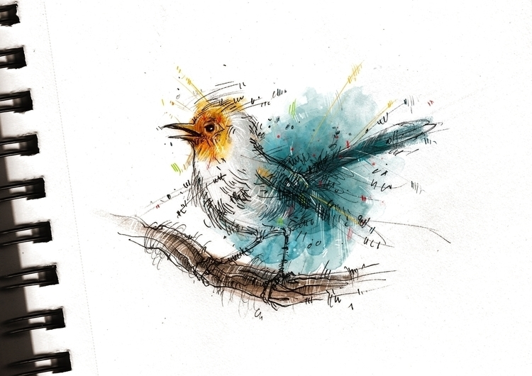 Fairy Wren - bird, sketch, sketchbook - marinaveselinovic | ello