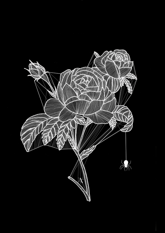 Spider Roses - illustration, photoshop - akumimpi | ello