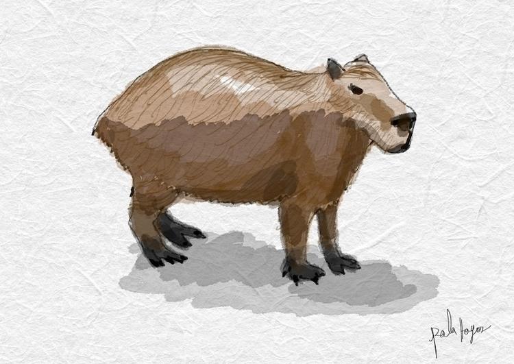 El chiguiro llanos orientales - illustration - palahoyos | ello