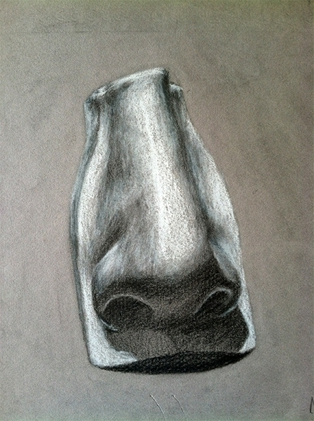 Nose Study- pencil white pastel - mallorycogut | ello