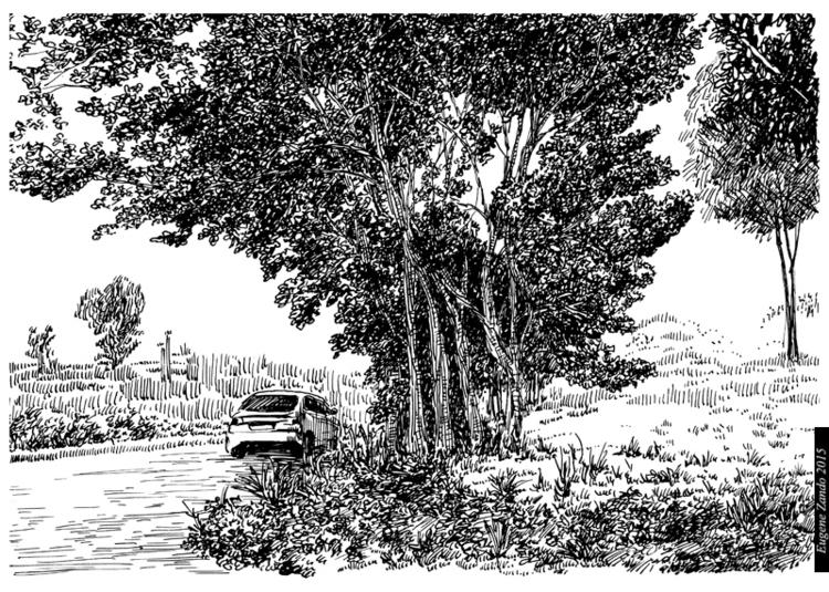 N8 - illustration - sarychev   ello