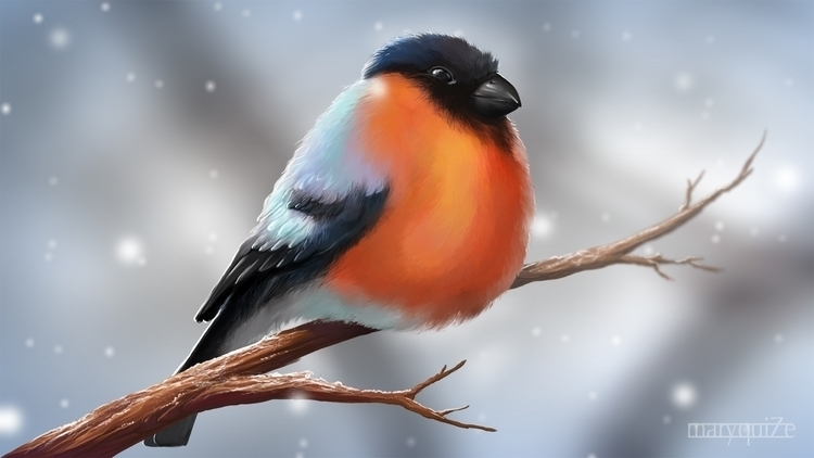 Frozen bullfinch - illustration - maryquize | ello