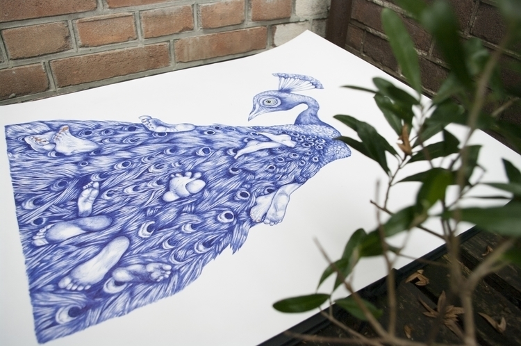 illustration, drawing, bicpen - franziskaschuetz | ello