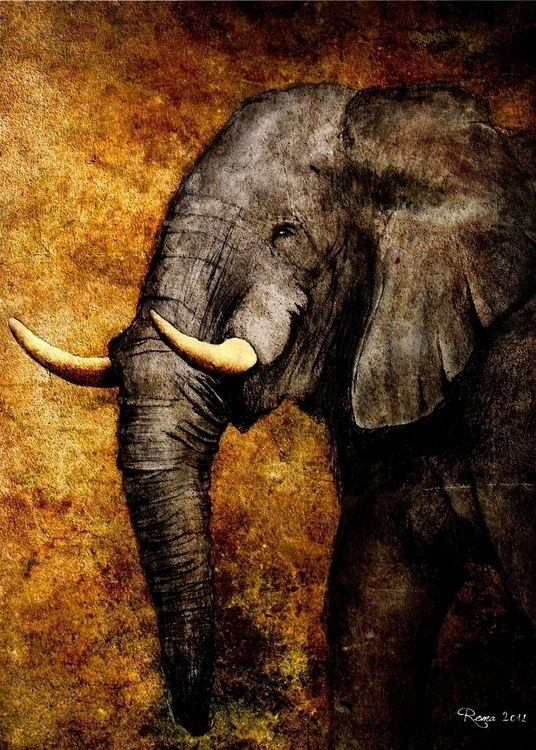 Elephant - romaartwork | ello
