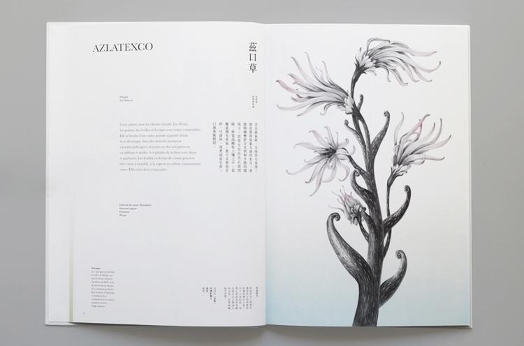 illustration, painting, drawing - yuhsuan   ello