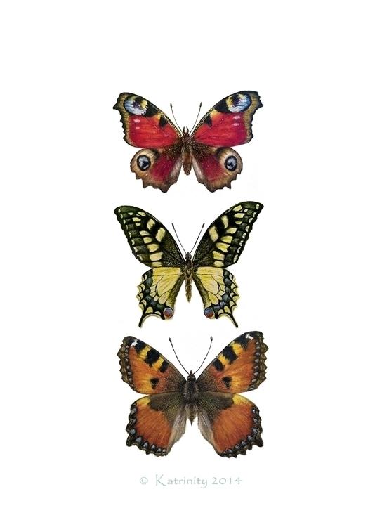 Butterflies - illustration, painting - katrinity-1318 | ello