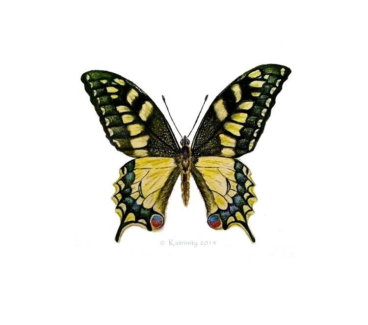 Butterfly - katrinityart, aquarelle - katrinity-1318 | ello