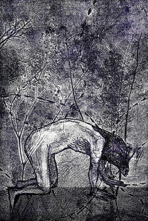 Metamorphosis Engraving, 2015,  - camilla-2048 | ello