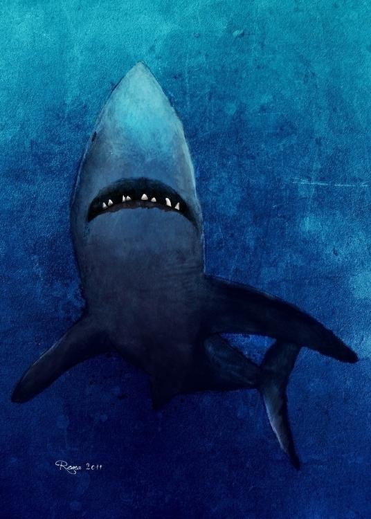 Shark - romaartwork | ello