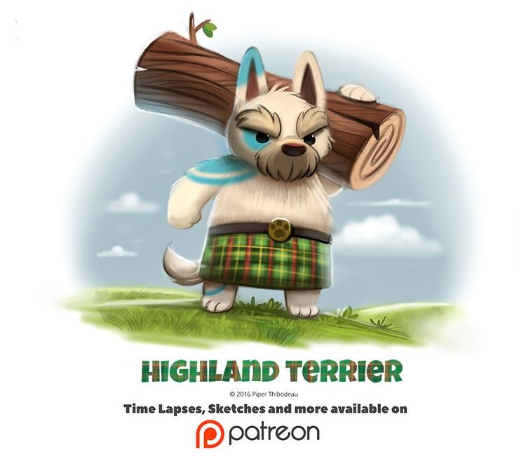 Day 1395. Highland Terrier - piperthibodeau   ello