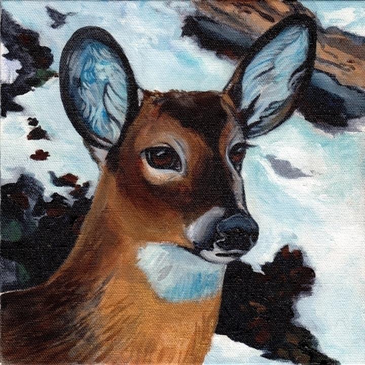 Deer Portrait. 8x8 Acrylic Fram - hootbark-1142 | ello