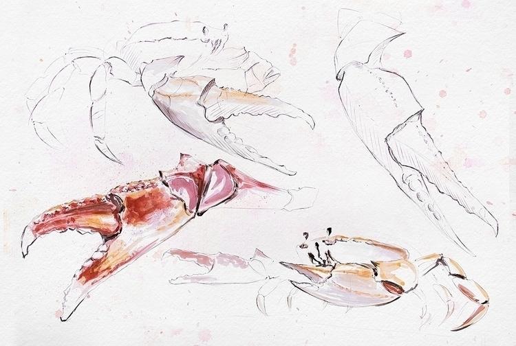 Watercolor study - animal, animals - danteed | ello
