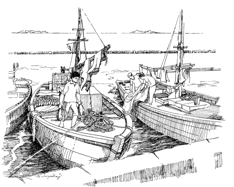 Fishing Boat- Maldives - illustration - sjayaraj999 | ello
