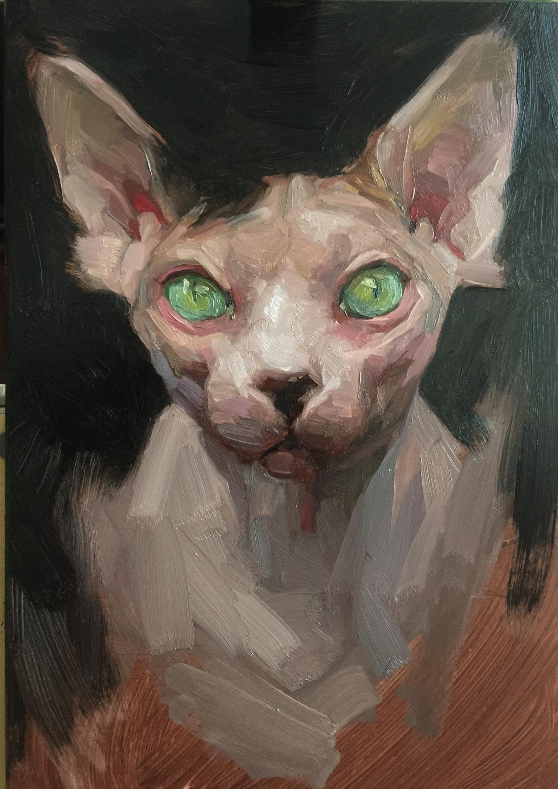 Alla prima cat. fun - sphynx, sphynxcat - jen_art | ello