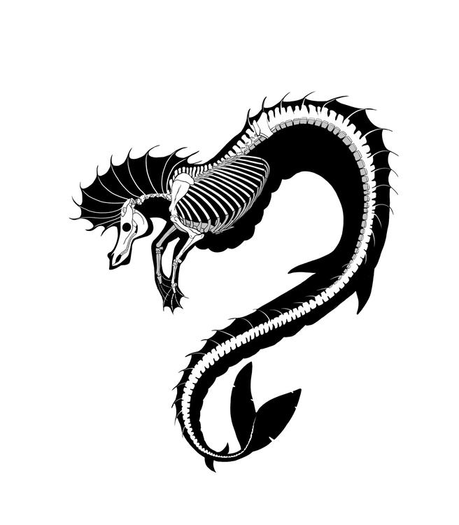 Seahorse Skeleton - creature, design - ashleyodell | ello