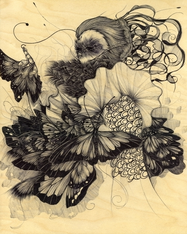 Heliconius Erato 16x 20 Ink Woo - evensillustration | ello
