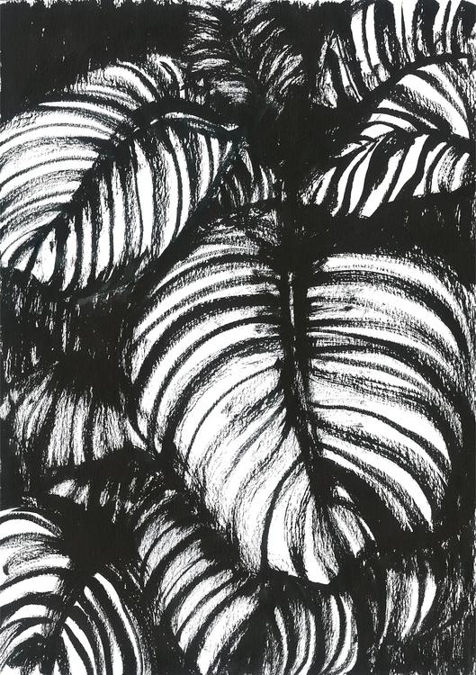Hosta Plants. Chinese ink A4 Da - sijie_ng | ello