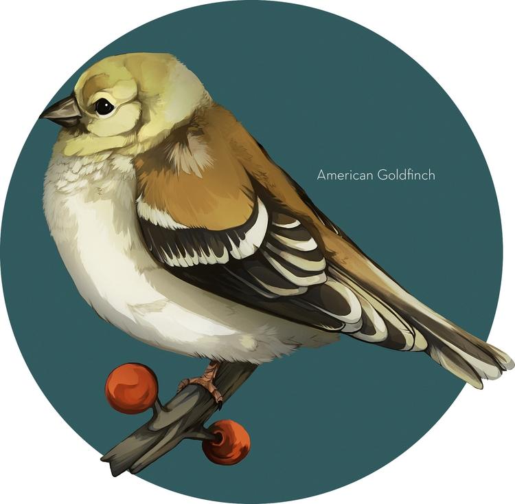 Portfolio work  - bird, illustration - uru-1113   ello