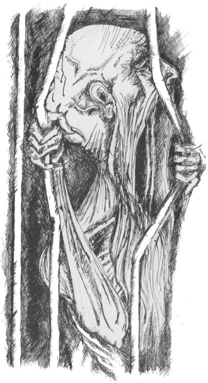 Jaula - illustration - batkogloom | ello