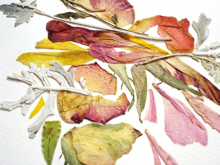 Real pressed flowers picture - illustration - floralcollage | ello