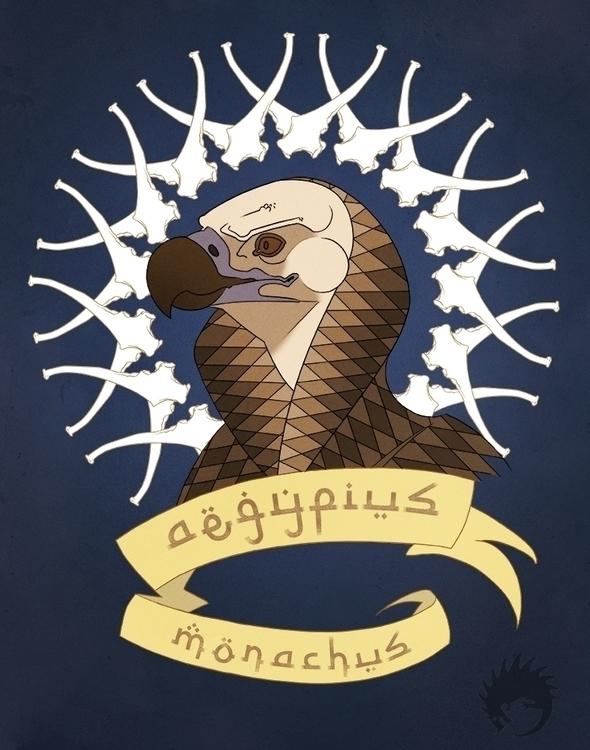 Cinereous vulture - illustration - reach-5958 | ello