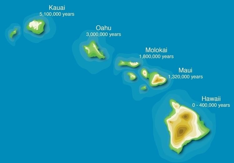 Hawaiian Islands - illustration - kiwi-1078 | ello